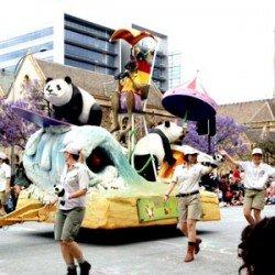pageant-day-pandas steve davis
