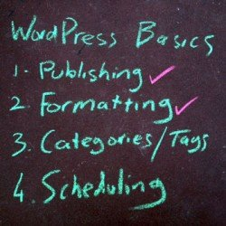 wordpress-basics-formatting Photo Steve Davis