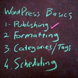 wordpress-basics-publishing Photo Steve Davis