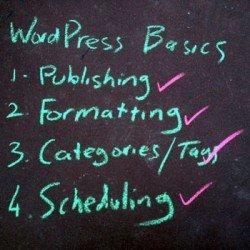 wordpress-basics-scheduling Photo Steve Davis