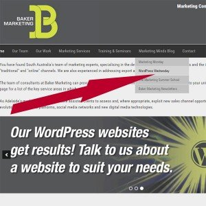 wordpress-page-menus Image Steve Davis